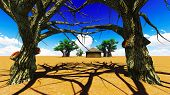stock photo of baobab  - African village With baobabs and hut - JPG