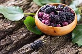 foto of mulberry  - Mulberry in bowl on wooden background - JPG