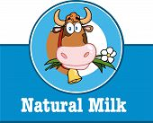 stock photo of moo-cow  - Cartoon Mascot Character Label With Cow And Text - JPG
