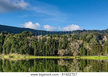 Beautiful Forest Landscape With Lake And Mountains