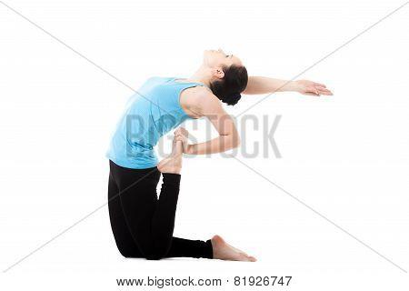 Yogi Female In Yoga Asana Ustrasana