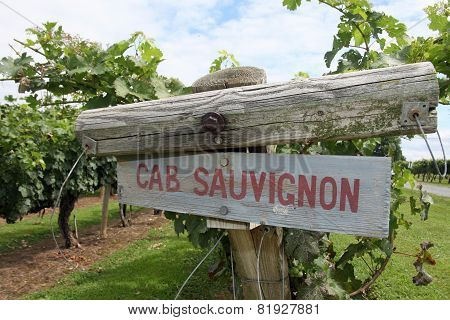 Cabernet Sauvignon Sign