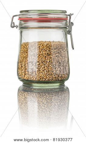 Wheat in a jar on a white background