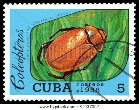 Vintage  Postage Stamp.   Beetle Heterosternus Oberthuri. Ohaus.
