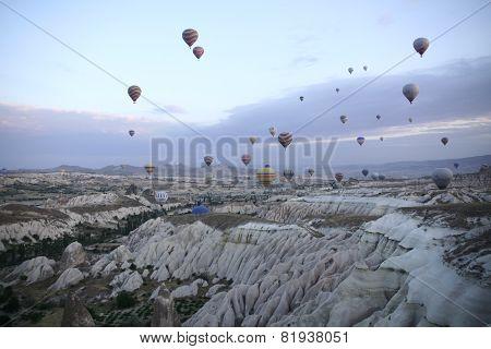 Dozens of balloons