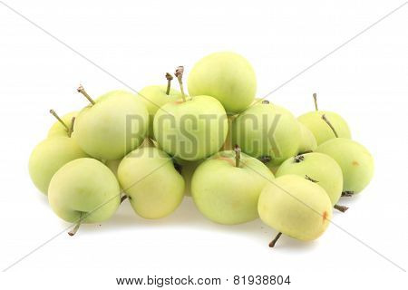 Early Sumer Green Apples