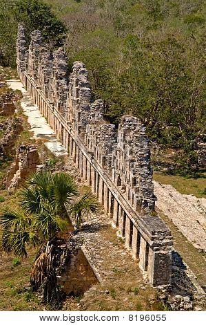 Uxmal, House Of The Doves, Yucatan, Mexico