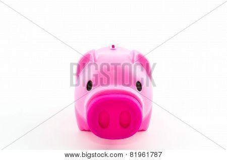 Pink Piggy Bank Saving .