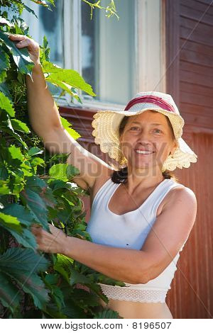 Woman  With  Virginia Creeper
