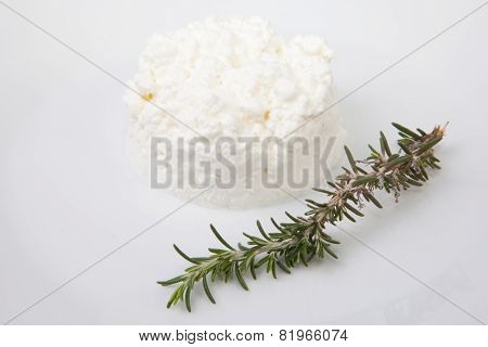 Granulated Cottage Cheese With Rosemary