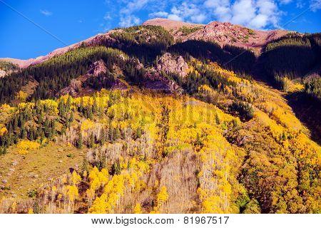 Scenic Autumn Mountain