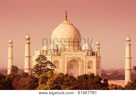 Taj Mahal From A Distance