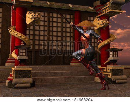 Kung Fu Woman Warrior
