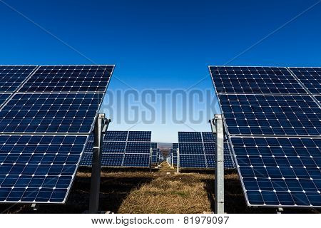 Rows Of Solar Panels In The Field