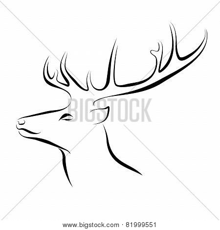 Head Of Deer Ink Line Art