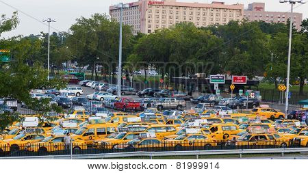 Yellow New York Taxis