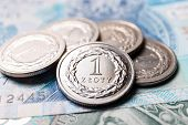 picture of lien  - close up of Polish zloty coins - JPG