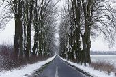 ������, ������: Country road in winter
