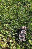 picture of yucky  - Fake foot bone Halloween decoration on grass - JPG