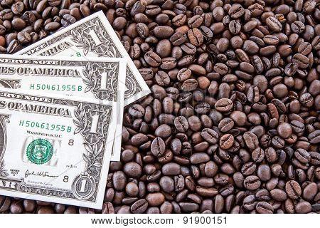 Dollar Money On Coffee Beans Background.