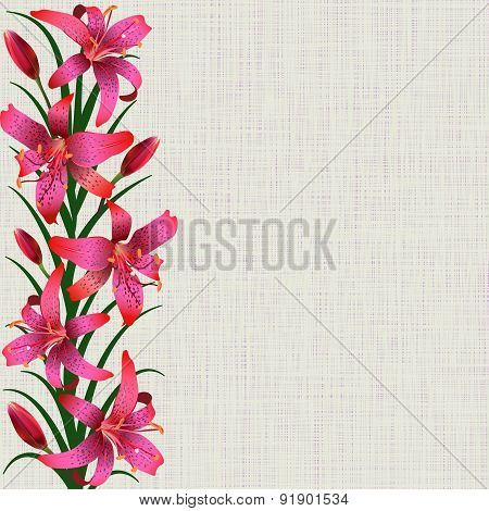 Pale Background With Red Tiger Lily Flowers, Leaves And Buds