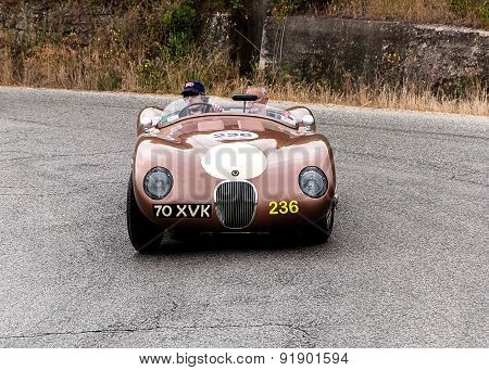old car JAGUAR C Type  mille miglia 2015