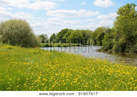 River Flowing Through A Meadow