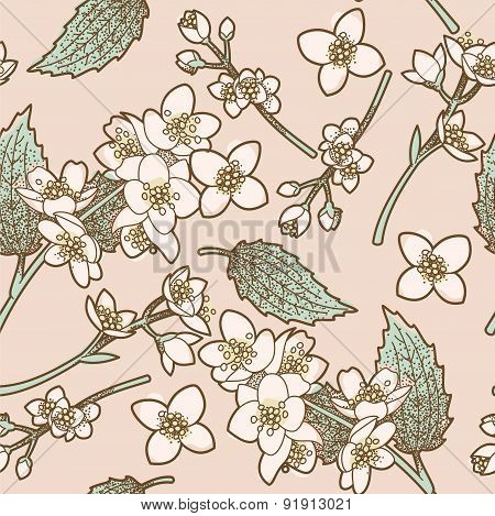 Jasmine Flowers Seamless Background