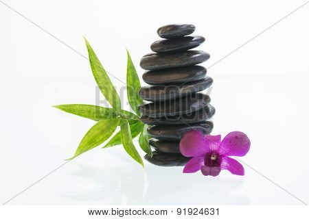 Black Zen Stones With Dendrobium Orchid
