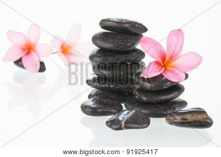 Plumeria Flowers And Black Stones