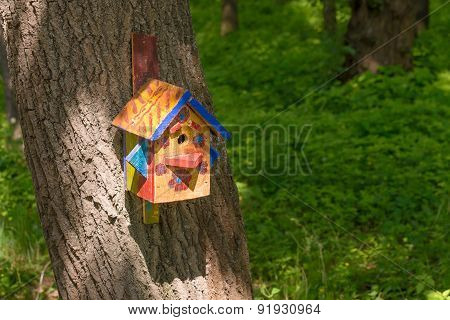 Bird Shelter In The Wood