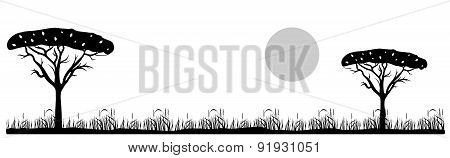 savannah landscape black