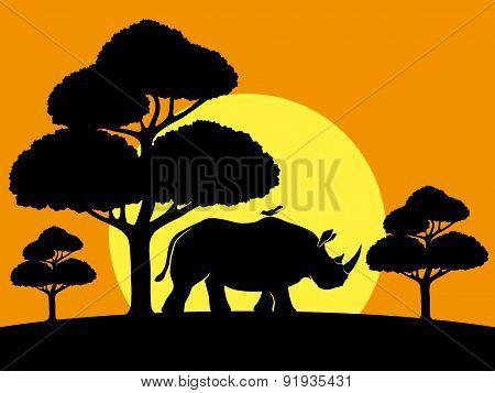 Vector illustration. Rhinoceros.