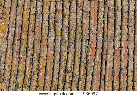 Ageing Rooftiles In Siena Italy