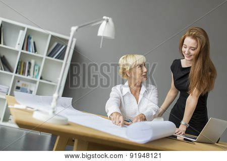 Women Working In The Office