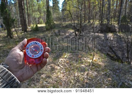 With Compass In The Woods.