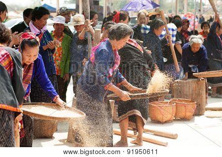 Phutai Minority Woman Winnowing Rice.
