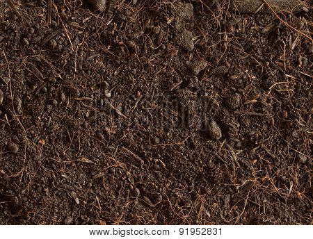 Peat Soil Texture Background