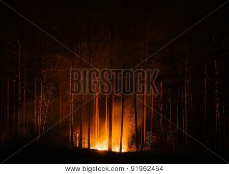 murderous beautiful wildfire