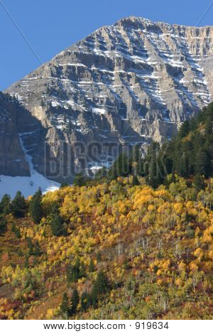 Colors Of Fall Surround Mount Timpanogos, Utah