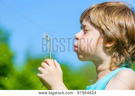 Kid blowing dandelion outdoor on green