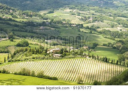 Panorama Of Rural Umbrian