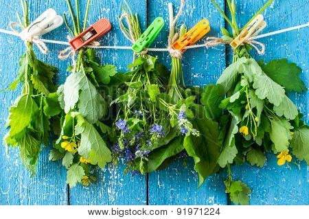 Medicinal Herbs For Herbal Medicine Dried