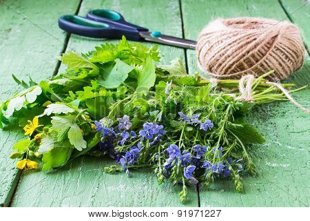 Herbs Are Prepared For Drying