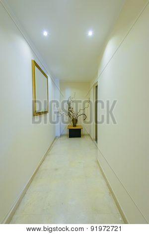 Fragment of modern corridor for five stars hotel