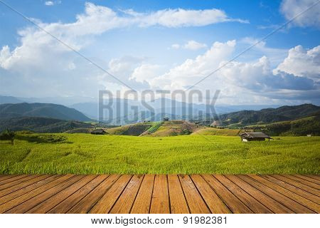 Landscape Of Rice Field With Sky And Wood Floor