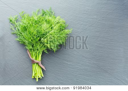 Fresh Dill On A Dark Stone Background
