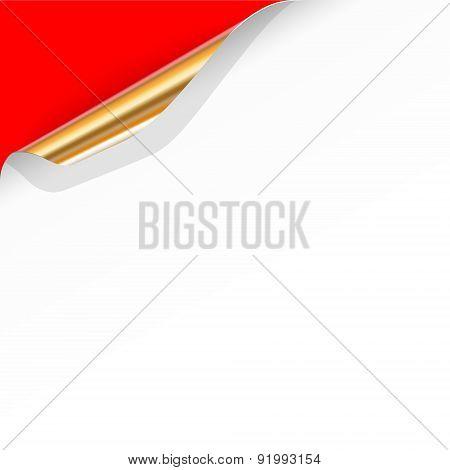 Gold Curled Paper Corner