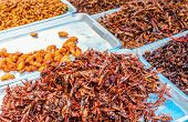 picture of locusts  - Locusts to sell at the market in the center of Bangkok - JPG