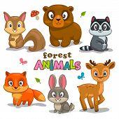 foto of cartoon animal  - Set of cute cartoon forest animals childish vector illustration - JPG